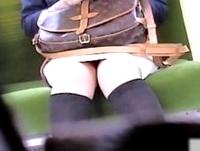 電車通学する素人女子大生でいっぱいの車両で座席に座るエロい太ももとパンチラをローアングルから盗撮抜き! ShareVideos 素人JD 女子大生の無料エロ動画